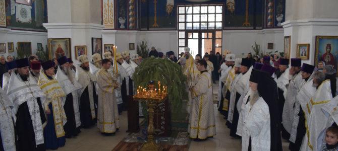 Поздравления Правящему архиерею с Рождеством Христовым