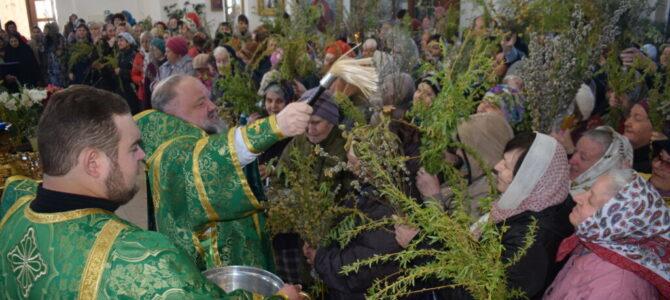 Божественная литургия в день Входа Господня в Иерусалим