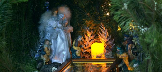 Праздник Рождества Христова в Джанкое