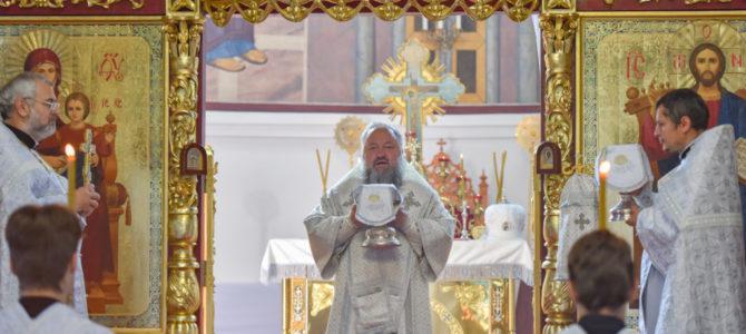 Божественная литургия в Троицкую родительскую субботу